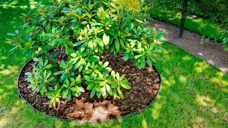 геопластборд, пластиковый бордюр для садовых дорожек и клумб, садовый пластиковый бордюр для приствольного круга деревьев69