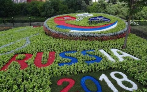 цветной декоративный щебень купить в спб, как украсить клумбу, идеи для сада и огорода своими руками фото, каменный ковер спб 452